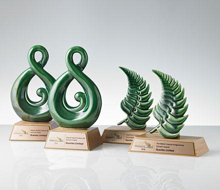 新西兰银蕨Logo认证项目增长奖